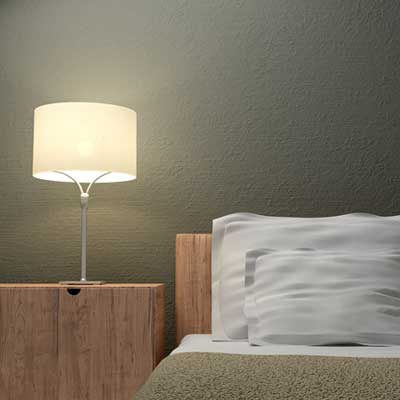 Mold Free Room