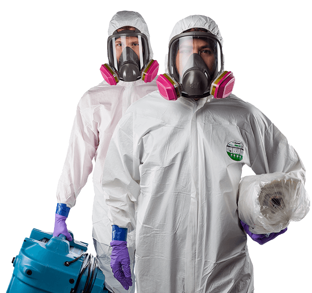 mold remediation Kitchener-Waterloo, Ontario